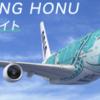 A380ホヌ チャーター第二弾 応募8月28日10時まで
